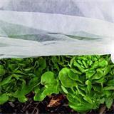 Gartenvlies Schutzvlies 1,5x10m 15gr Frühbeetvlies