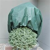 Dieses Wintervlies ist perfekt geeignet, um kleine Bäume winterfest zu machen.