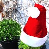 Die lustige Nikolausmütze versetzt jeden Garten in Weihnachtsstimmung.