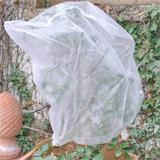 So können Sie Ihre Rosen sicher vor Kälte schützen.