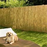 Im Garten als Sichtschutz - nicht blickdicht - macht sich Schilfrohr gut
