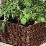 Mühelos können Kräuter und Salat auf dem Balkon angebaut werden.