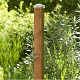 Zaunpfosten Vierkantpfosten Kiefer braun 7x7cm