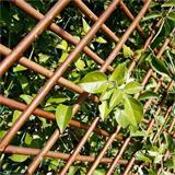 Im Garten hilft das Rankgitter Pflanzen beim Wachsen