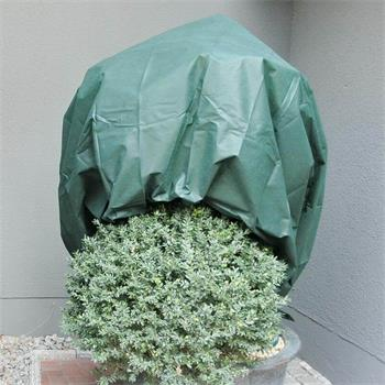 Wintervlies 34g/m² 1,6 x 5m grün Winterschutz