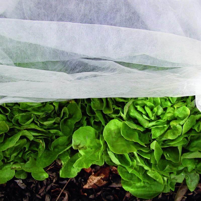 Leichtes und stabiles Vlies für den schutz von Salat und Gartenpflanzen.