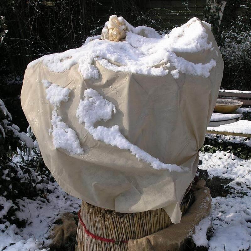 Dieses Universalvlies ist geeignet als Wintervlies zum Schutz von Pflanzen.