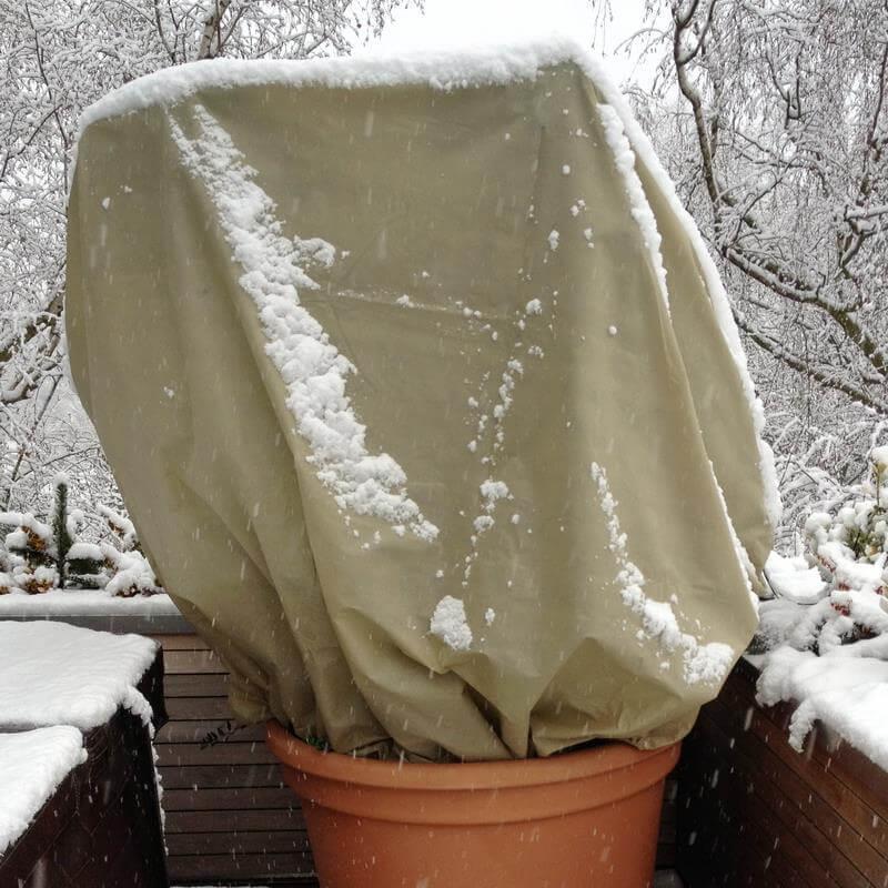 Winterschutzhauben