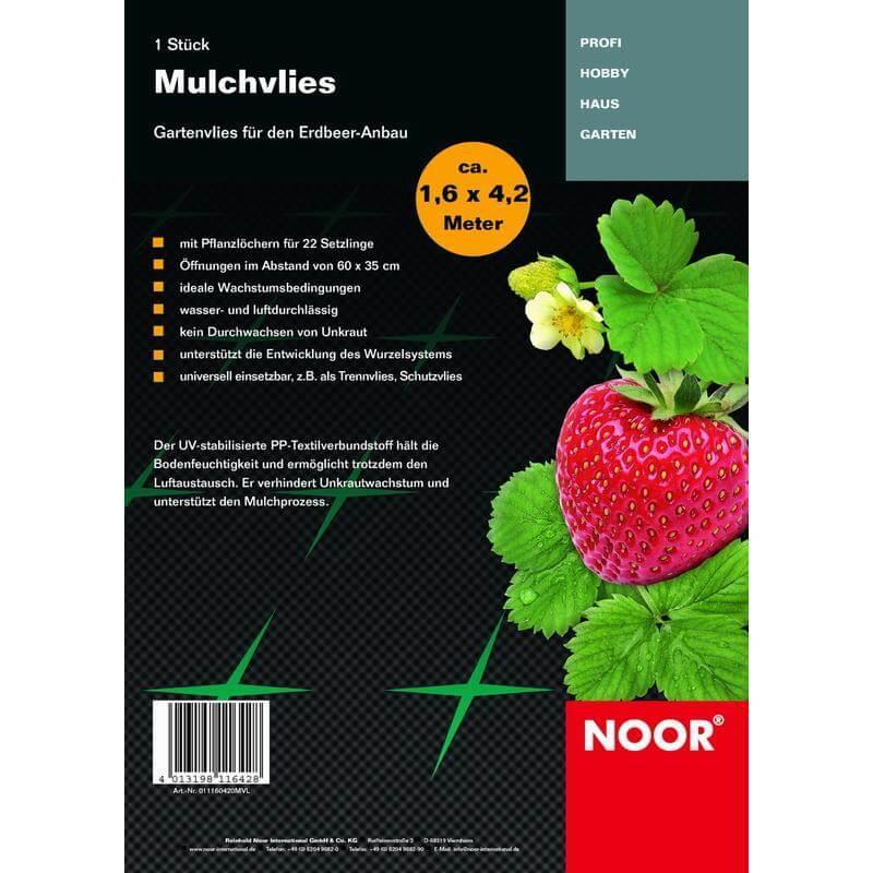 Das Vlies bewahrt Wasser vor der Verdunstung und nützt somit den Erdbeeren.
