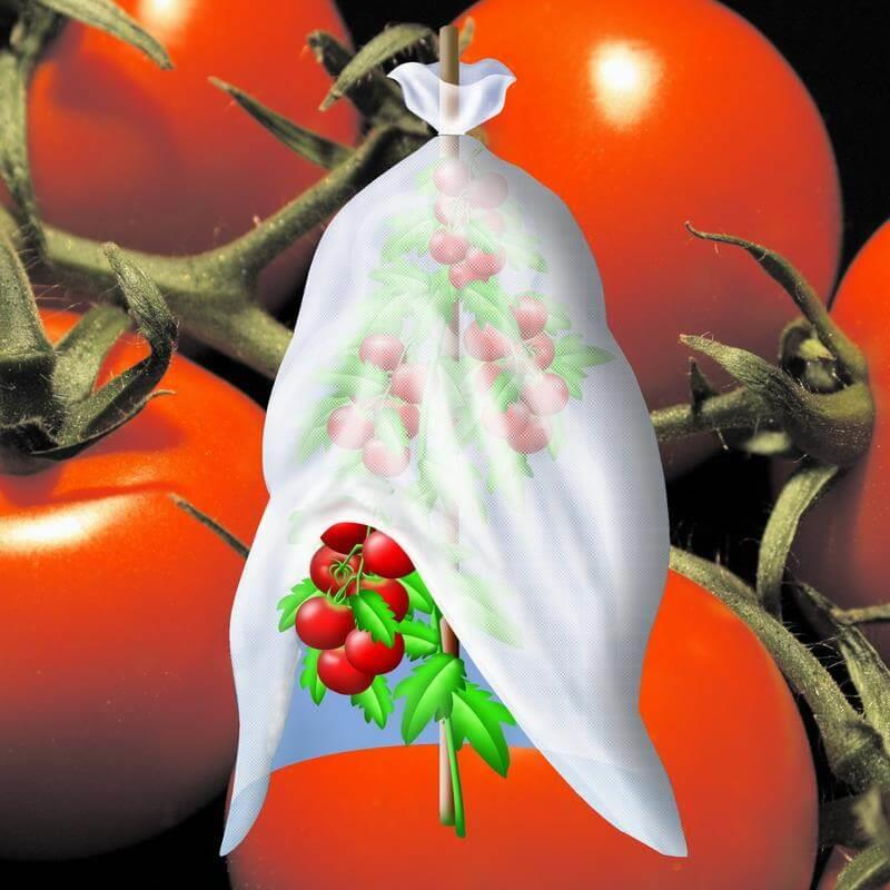 Tomatenvlies Tomatenhaube 0,7x10m 17 g/m² Schlauch