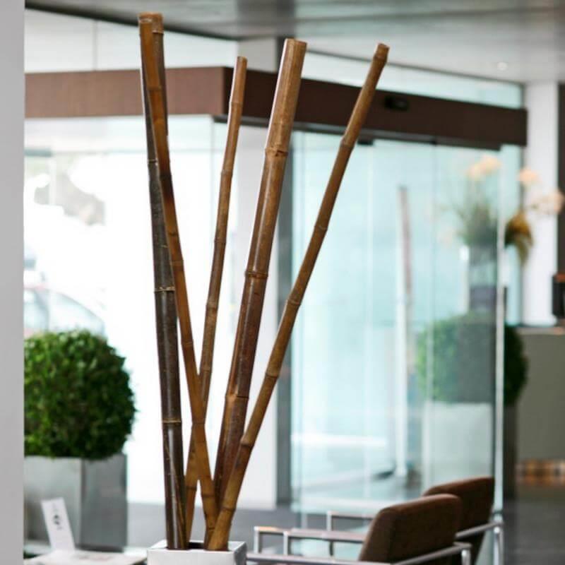 Mit den Bambusrohren lässt sich im Innenraum eine wunderschöne Kulisse zaubern.