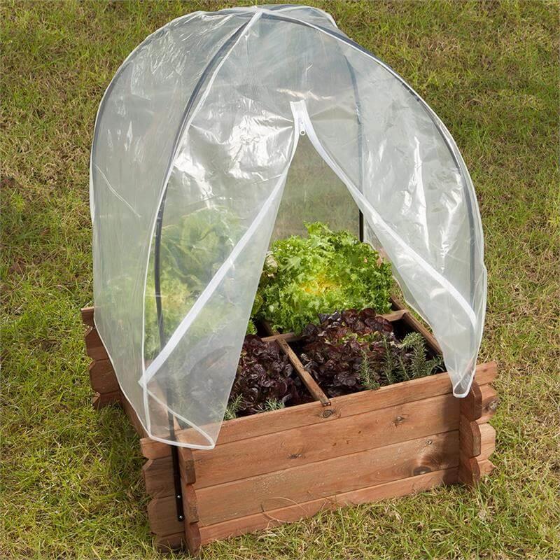 Die Frühbeethaube verwandelt Ihr Beet in ein Minigewächshaus.