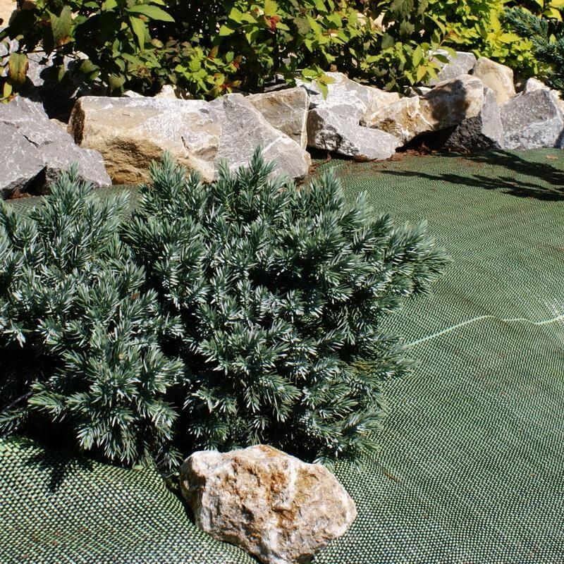 Dieser Unkrautblocker in der Farbe grün hilft einfach und hoch wirksam