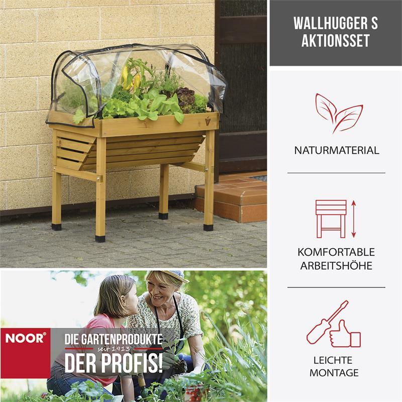 Wallhugger S Aktionsset mit Gewächshausaufsatz